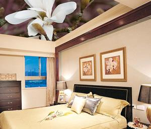Потолок в спальне - фото 6